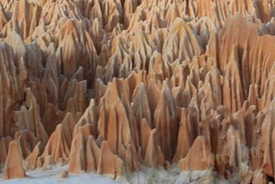 Madagascar, Destination Très Nature